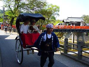 奥に見えるのは有名な中橋。桜も綺麗で、高山祭では豪華絢爛な山車が中橋を渡ります