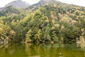 明神一之池と山の黄葉